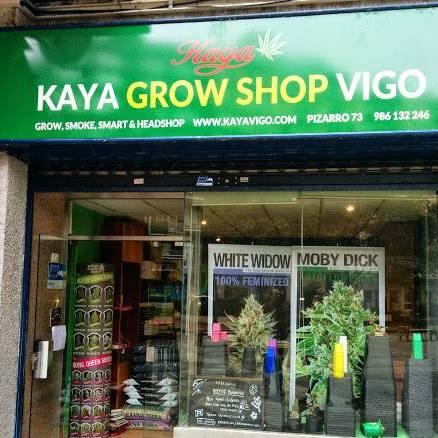 Kaya Vigo